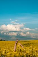 """Raivja Mileiko fotoizstāde """"Tās zemes ieskautais"""""""