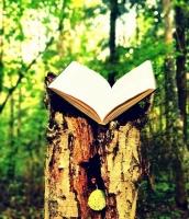 Dzejas dienas 2018 Latgales Centrālajā bibliotēkā