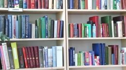 На помощь нуждающимся читателям приходят библиотекари (ВИДЕО)