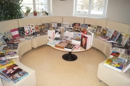 Коллекция книг по искусству в публичных библиотеках города