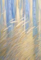 Художница Наталья Мариноха представит выставку «Прикосновение света»
