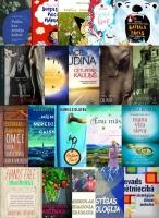 2017. gada lasītākās grāmatas Daugavpils bibliotēkās