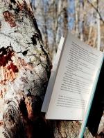Библиотека приглашает отметить Всемирный день поэзии