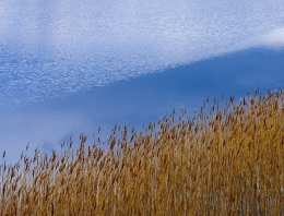 Даугавпилсские фотографы приглашают на выставку «Оттенки синего»